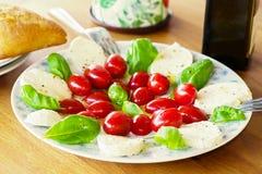 Salad caprese Stock Photography