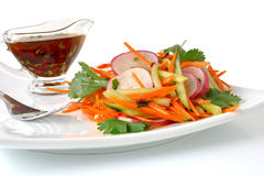 Salad with carrot, cucumber and radish Royalty Free Stock Image