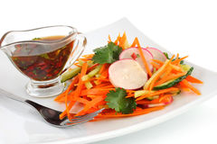 Salad with carrot, cucumber and radish Royalty Free Stock Photo