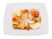 Salad cesar with lettuce, chicken, egg, cheese, crackers Royalty Free Stock Image
