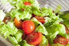 Salad with cheery tomatoes and green leaves Stock Images