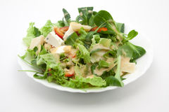 Salad with cheese and French Stock Photography