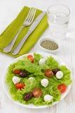 Salad with cheese mozzarella Stock Photos