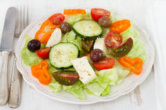 Salad with cheese Stock Photography
