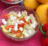 Salad of cheese. Some fresh salad with cheese Stock Images