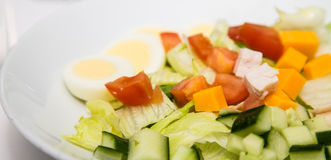 Salad with Cheese Tomato and Boiled Egg Stock Photography