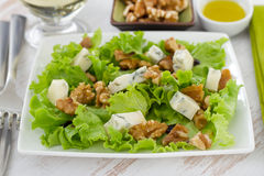 Salad with cheese and walnut Stock Photography