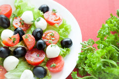 Salad with cherry tomatoes and mozzarella caprese Royalty Free Stock Photo