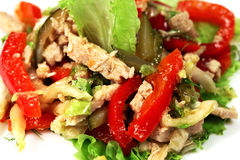 Salad with chicken Royalty Free Stock Images
