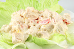 Salad with chicken Royalty Free Stock Photography