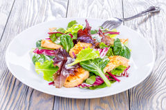 Salad with chicken breast and  lettuce leaves, spinach, top view Royalty Free Stock Images