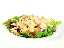 Salad with chicken4 Royalty Free Stock Photography