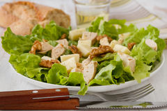 Salad chicken and cheese Stock Photography