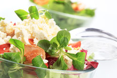 Salad with chicken and curd cheese Stock Photography