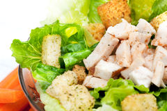 Salad Chicken Detail Stock Photos