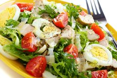 Salad with chicken, egg and tomatoes. Royalty Free Stock Photography