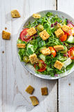Salad with chicken and fresh vegetables stock photos