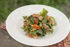 Salad with chicken leaver and lettuce. Delicious hot salad in the open air Stock Images