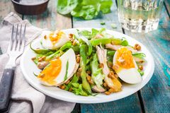 Salad with chicken, lentils and green beans Stock Image