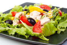 Salad with the chicken and lettuce Royalty Free Stock Images