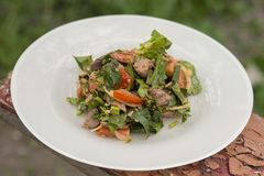 Salad with chicken liver. Delicious hot salad in the open air Stock Image