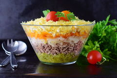 Salad with chicken liver in layers with pickles,boiled carrot, egg, cheese in a glass bowl on a black abstract Stock Photos