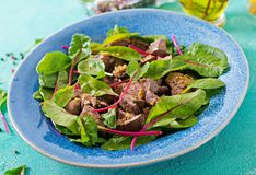 Salad of chicken liver and leaves of spinach and chard. Salad of chicken liver and leaves of spinach and chard on turquoise background Stock Photos