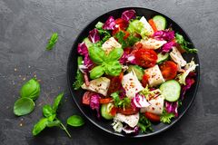Salad with chicken meat. Fresh vegetable salad with chicken breast. Meat salad with chicken fillet and fresh vegetables. On plate Royalty Free Stock Photography