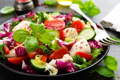 Salad with chicken meat. Fresh vegetable salad with chicken breast. Meat salad with chicken fillet and fresh vegetables. On plate Royalty Free Stock Photo