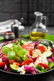 Salad with chicken meat. Fresh vegetable salad with chicken breast. Meat salad with chicken fillet and fresh vegetables. On plate Stock Photography