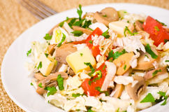 Salad with chicken, mushrooms, cheese and vegetables Royalty Free Stock Photos