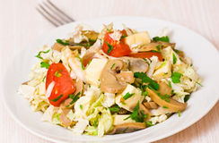 Salad with chicken, mushrooms, cheese and vegetables Royalty Free Stock Photo
