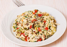 Salad with chicken, mushrooms, eggs, cheese, vegetables Stock Images