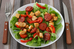 Salad with chicken and sausages Stock Images