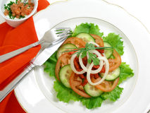 Salad of chicken with tandoori spices 3 Royalty Free Stock Image