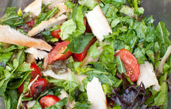 Salad with chicken, tomatoes and greens Royalty Free Stock Photos