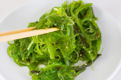 Salad chuka in white dish with chopsticks Stock Photography