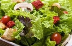 Salad Close Up Stock Photo
