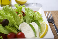 Salad close up Royalty Free Stock Photos