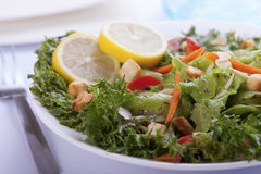 Salad Close-up. Closeup salad with French dressing royalty free stock images