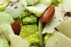 Salad Close up Royalty Free Stock Photography