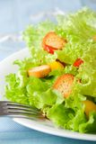 Salad closeup Royalty Free Stock Photos