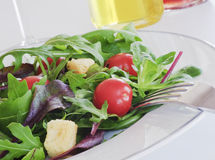 Salad closeup Stock Photography
