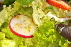 Salad closeup Stock Photos