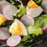 Salad closeup Royalty Free Stock Image