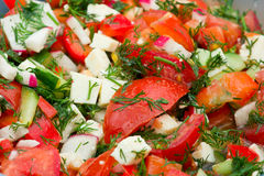 Salad closeup photo. Salad closeup shot. Summer salad made of differend vegetables Royalty Free Stock Photography
