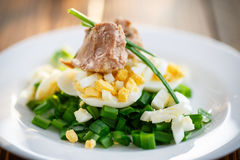 Salad with cod liver oil, eggs and green onion stock images