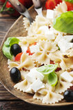 Salad with cold pasta and mozzarella and tomato Royalty Free Stock Image