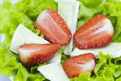Salad - colored and tasty Royalty Free Stock Photos
