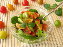 Salad with colored tomatoes Royalty Free Stock Image